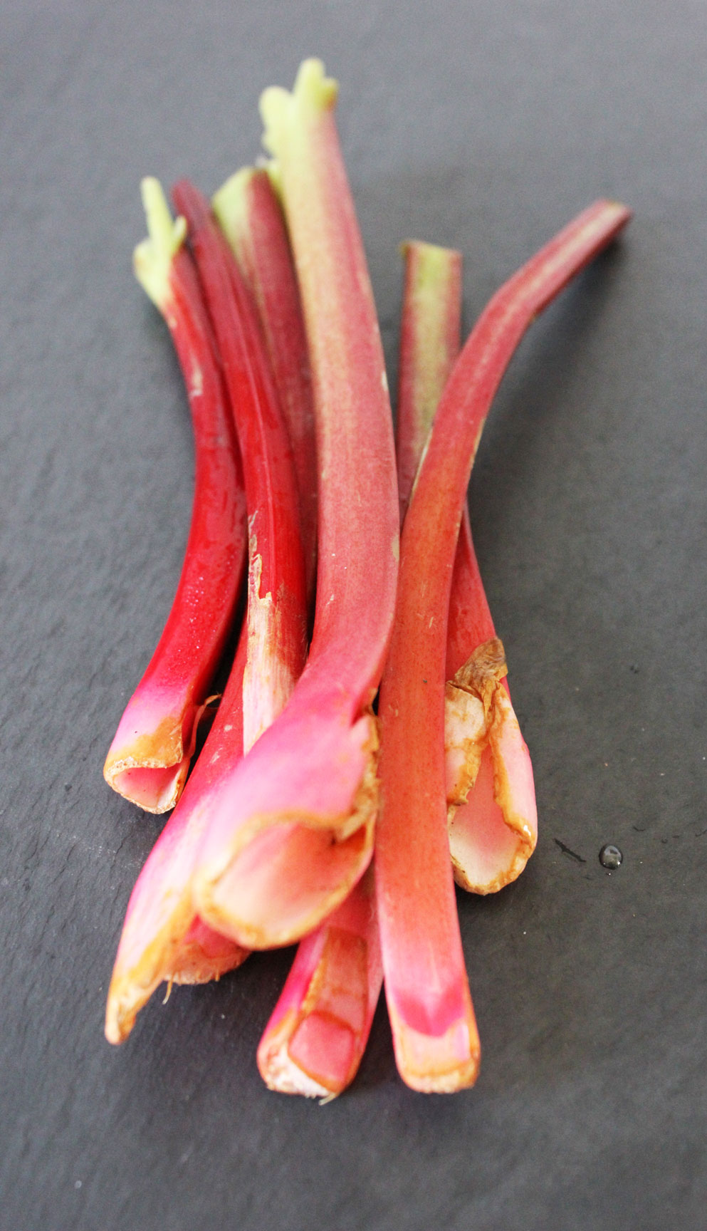 Rhubarb Ready: A Round-up of Rhubarb Recipes