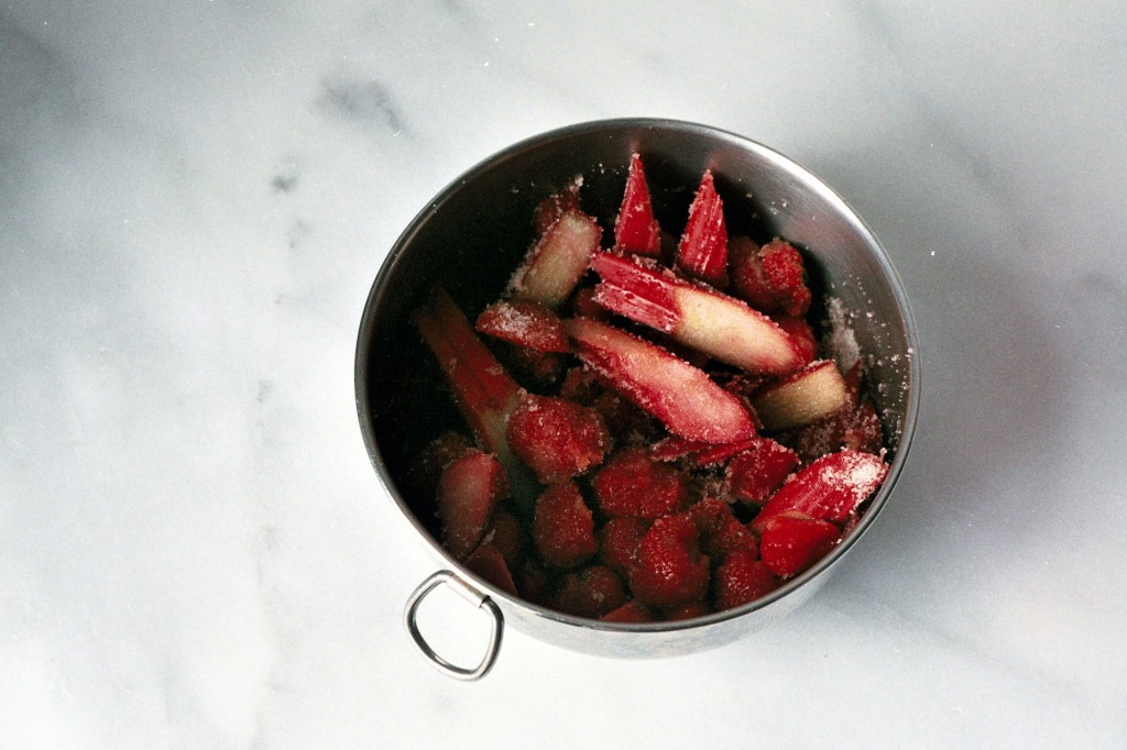 strawberry-rhubarb-panzanella-6