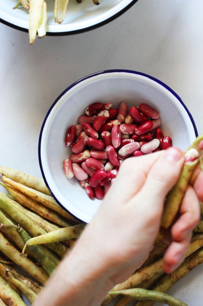 pot-of-beans-2