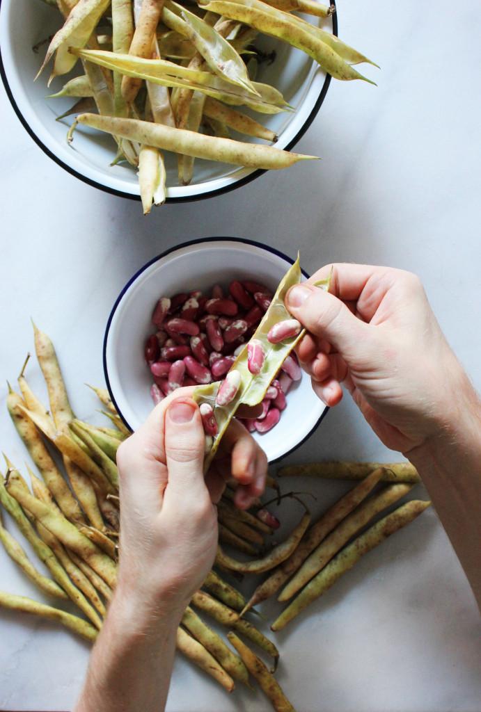 pot-of-beans-4