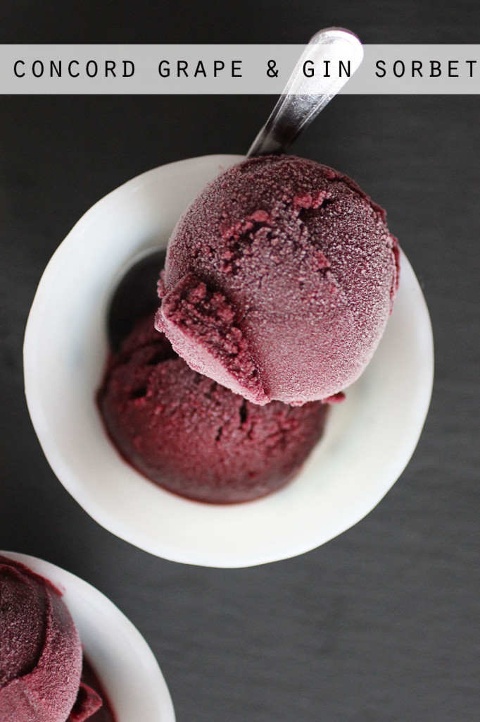 Concord Grape Gin Sorbet || Autumn Makes & Does