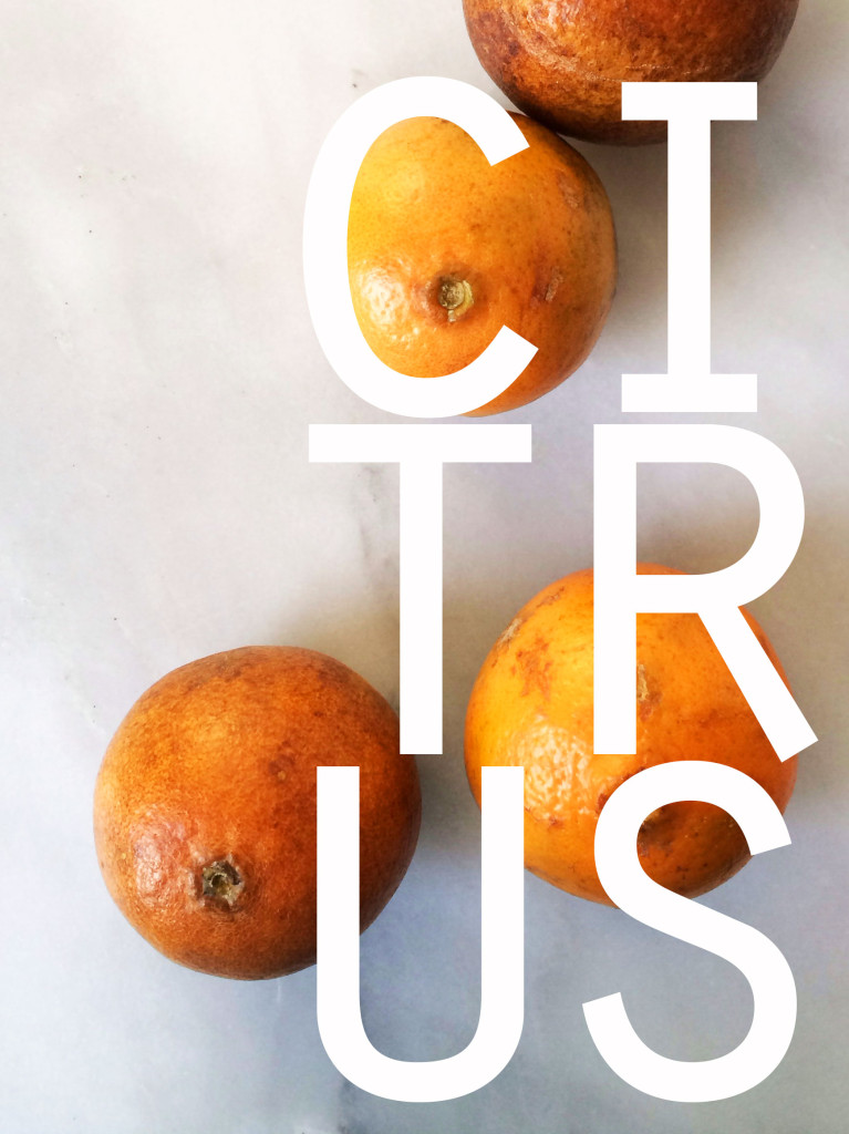 17 citrus recipes that will get you through the slog to spring // Autumn Makes & Does