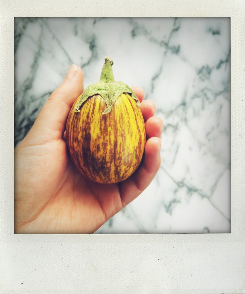 Adorable Eggplant // Autumn Makes & Does